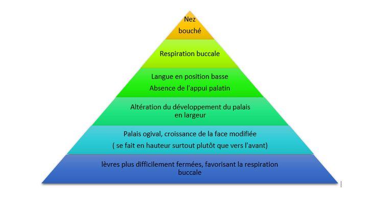 Oralité : pyramide nez bouché
