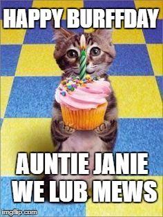 Happy Birthday Cat Meme Generator - Imgflip