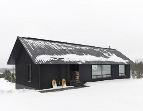 modern cabin. Love the black with black metal roof and the area to store firewood out of the elements.
