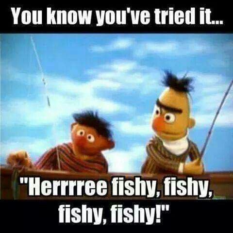 "You know you've tried it....""Herrrree fishy, fishy, fishy, fishy!"""