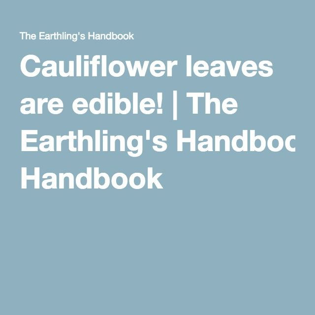 Cauliflower leaves are edible! | The Earthling's Handbook