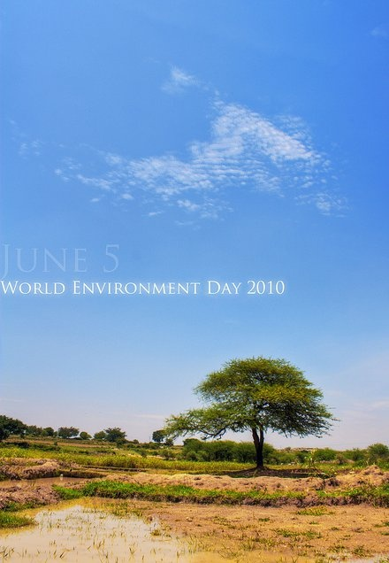 Poster Hari Lingkungan Hidup