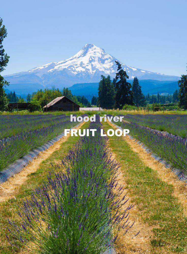 Explore the Hood River Fruit Loop!