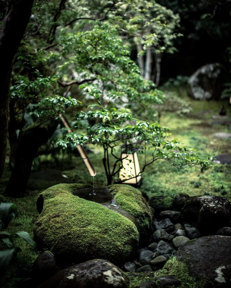 Elizabeth Kirby: Japan. The quiet, the calm, the perfect imperfections.