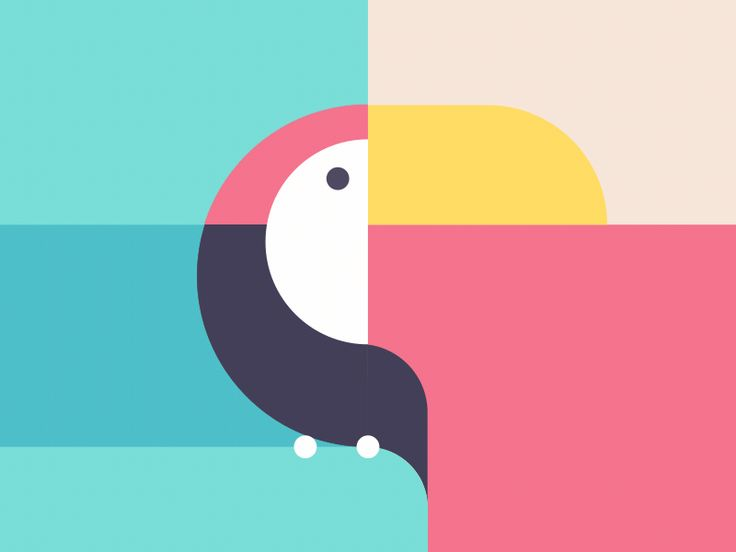 GIF for fun. Three of my favorite animals in one GIF covering land, sea and in the air.