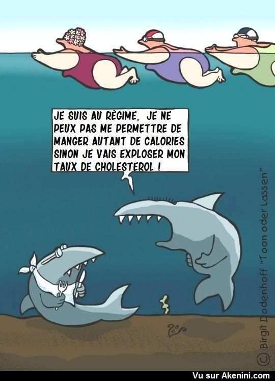 Images drôles animaux - Funny cartoons animals | Humour facebook, Dessin humoristique, Humour bébé