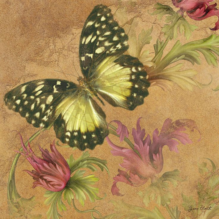 Realistic butterfly paintings - photo#18