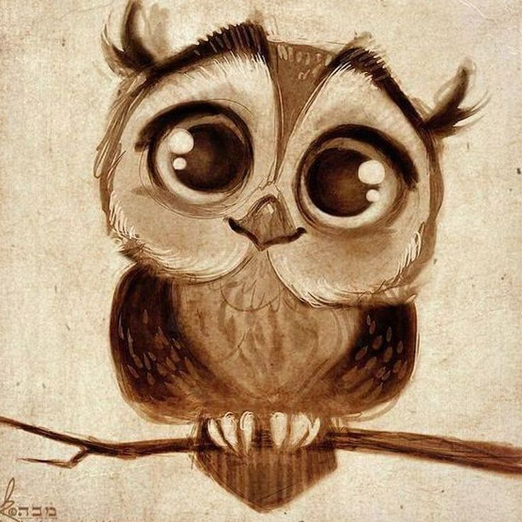 Cute Wallpapers With Emojis Best 25 Owl Wallpaper Iphone Ideas On Pinterest Owl