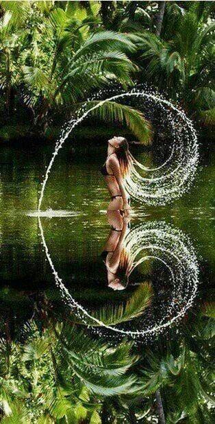 Gorgeous Shot