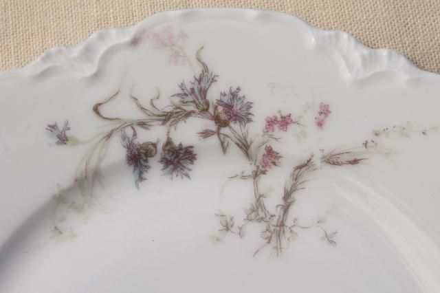 antique vintage Haviland Limoges china plates, blue cornflowers w/ pink