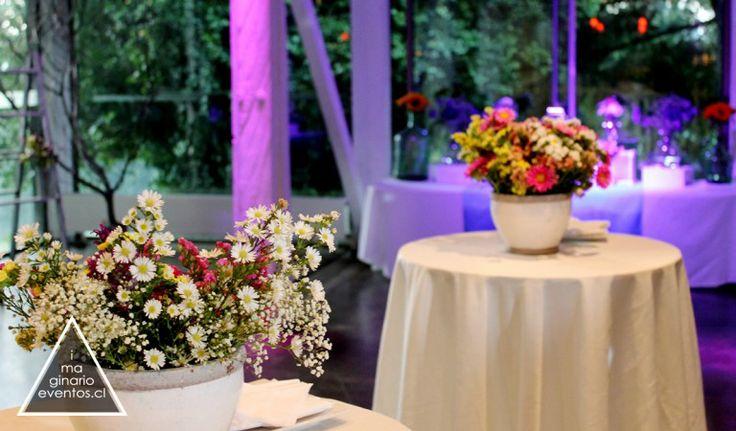wedding deco neo hippie Temuco Chile