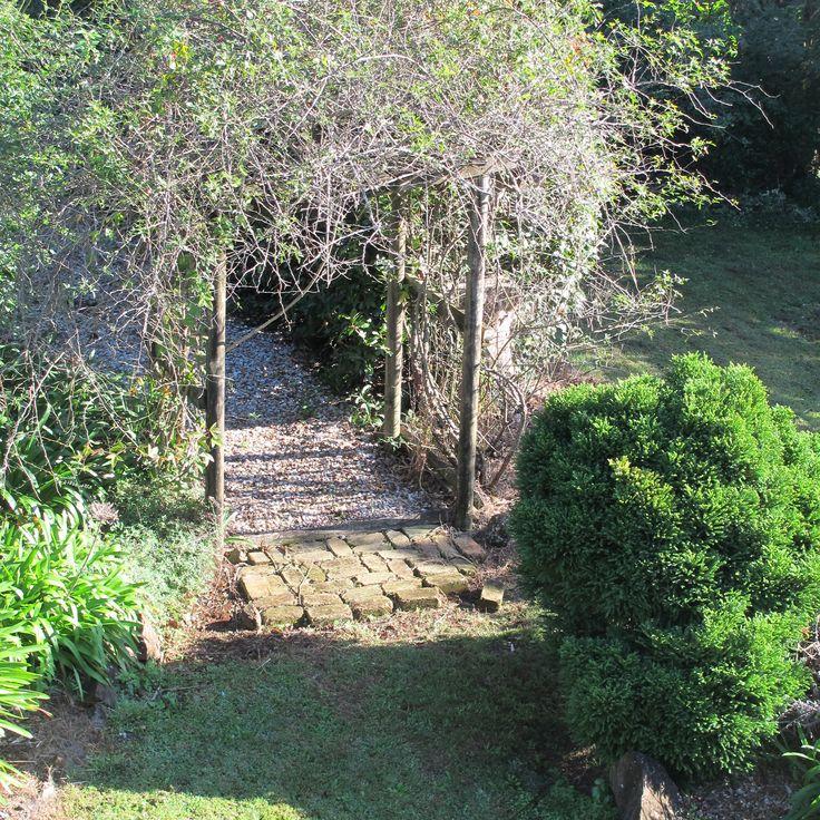 2016 Belles writers' retreat. Tamborine Mountain. The back garden.