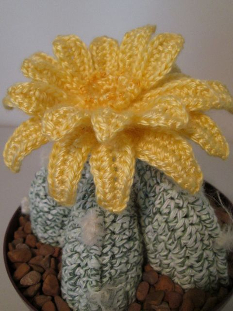 Ravelry: Bishop Cactus crochet pattern par Marilyn Smith