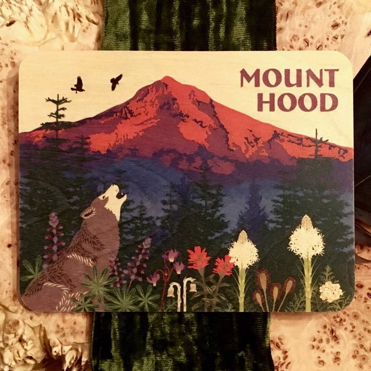 In celebration of Earth Day support Bark in protecting the Mt Hood National Forest by purchasing this postcard. All proceeds go to Bark non-profit!