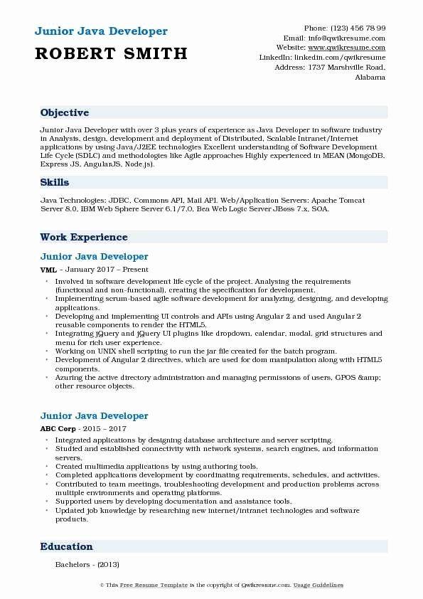 Junior Software Developer Resume Luxury Junior Java Developer Resume Samples