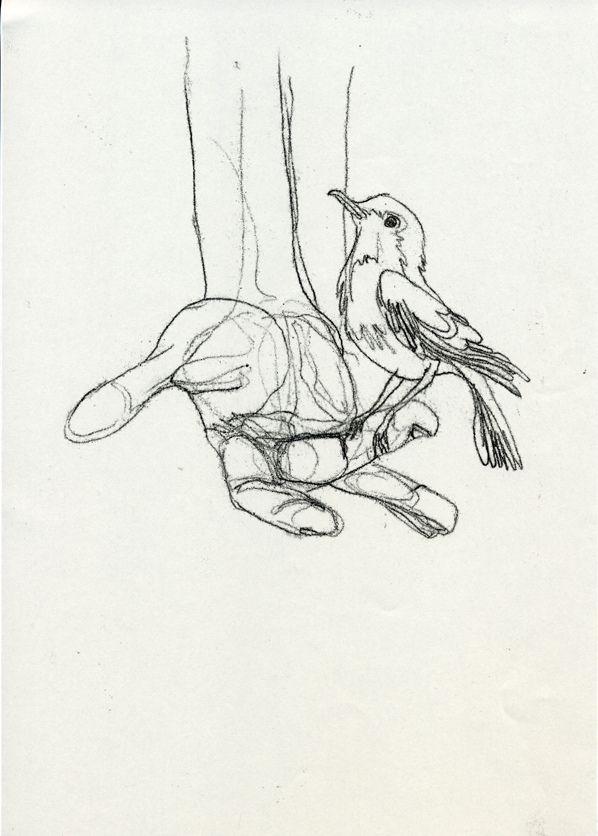 A bird in the hand - Paula McGloin