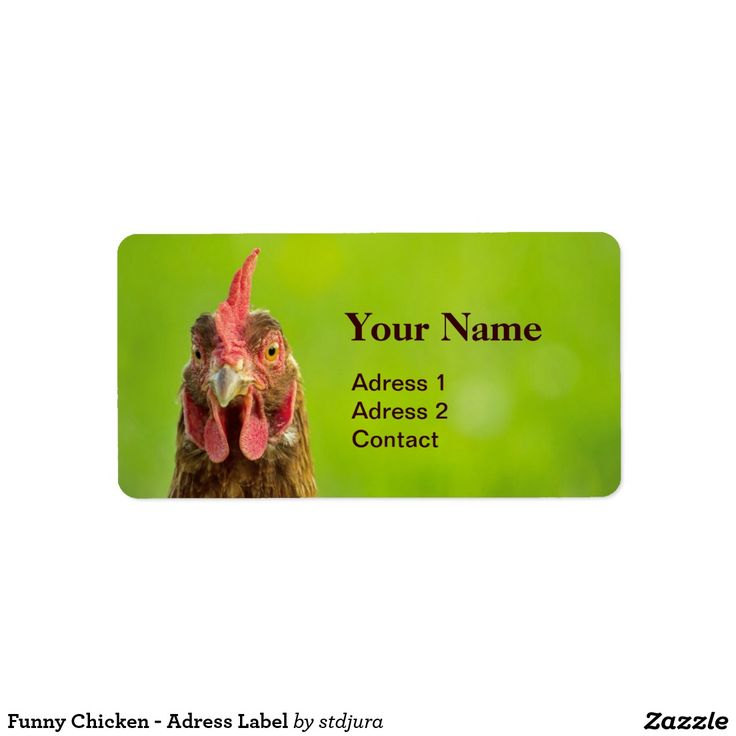 Funny Chicken - Adress Label Address Label