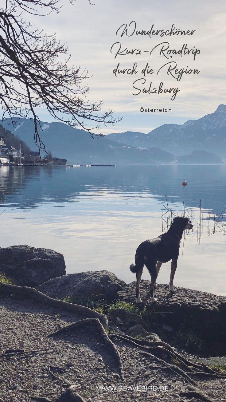 Osterreich 4 Traumorte In Der Region Salzburg Reiseblog Bravebird Urlaub Mit Hund Osterreich Reisen Winterurlaub