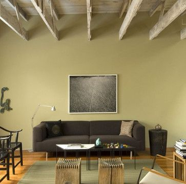 Green Painted Living Rooms Design Ideas, Pictures, Remodel, and Decor