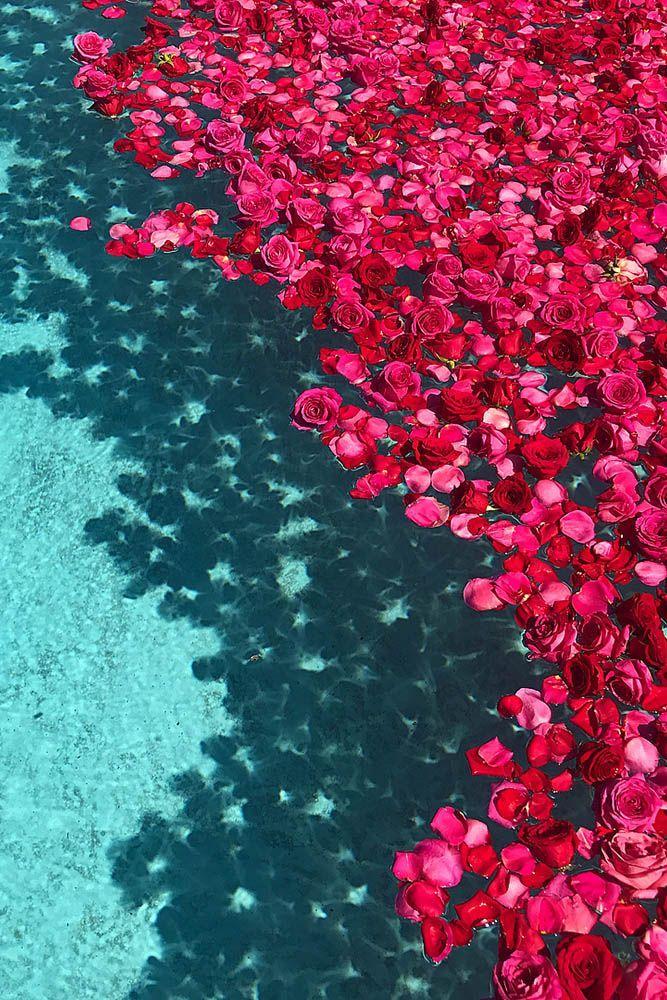 21 idées de décoration de fête de piscine pour votre mariage dans l'arrière-cour   – Ideas de fondos de pantalla