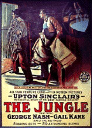 The Jungle, Upton Sinclair - Essay