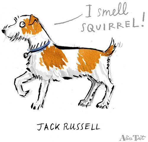 Jack Russell - Alice Tait Prints - Easyart.com