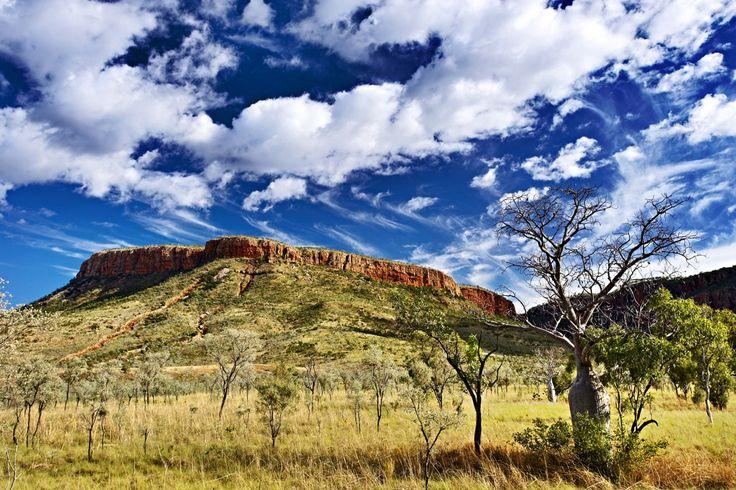 The Kimberley, El Questro Wilderness Park  www.thekimberleycollection.com.au
