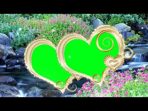Pin on wedding background video [green screen background]{hd