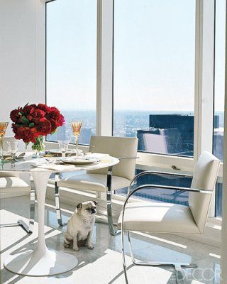 Stylish Pug Max sits in the breakfast area, which features a Saarinen Tulip table and Brno armchairs - Elle Decor