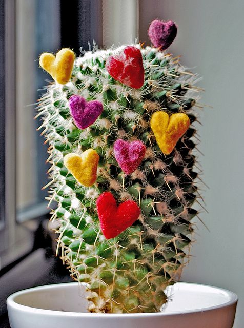 Valentines Day Cactus by Marchi Wierson, via Flickr. Felted hearts.