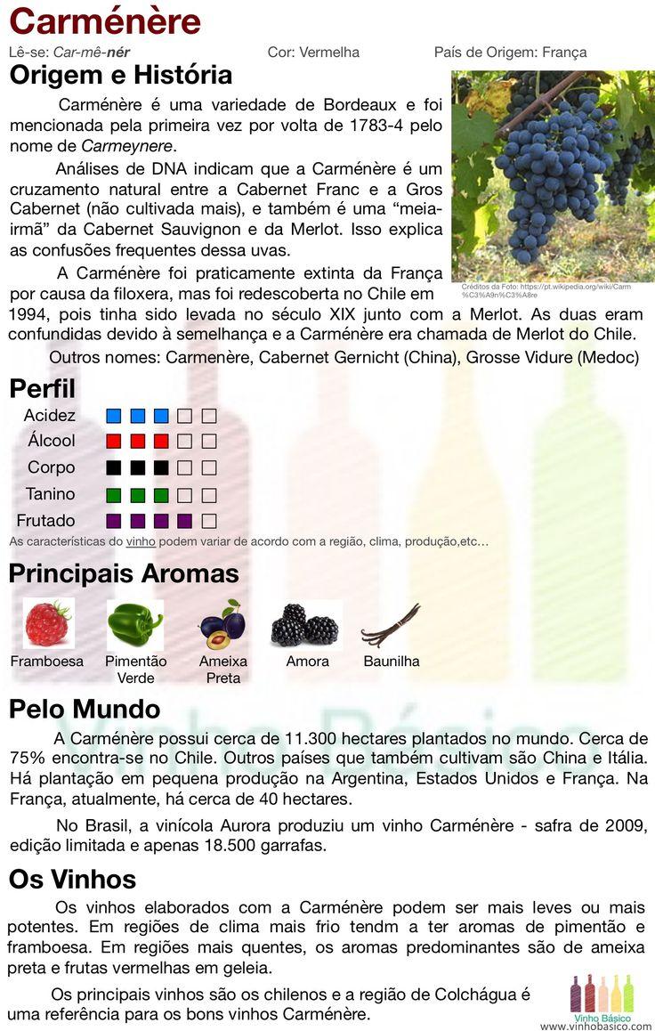 Carménère: origem e características da uva e o estilos de seus vinhos.