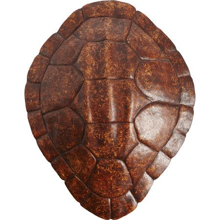 Hang This Sculptural Turtle Shell Decor Above The Mantel To Create A Bold Focal Point Or Let It Complete A Safari Chic Gallery Wall In The Den