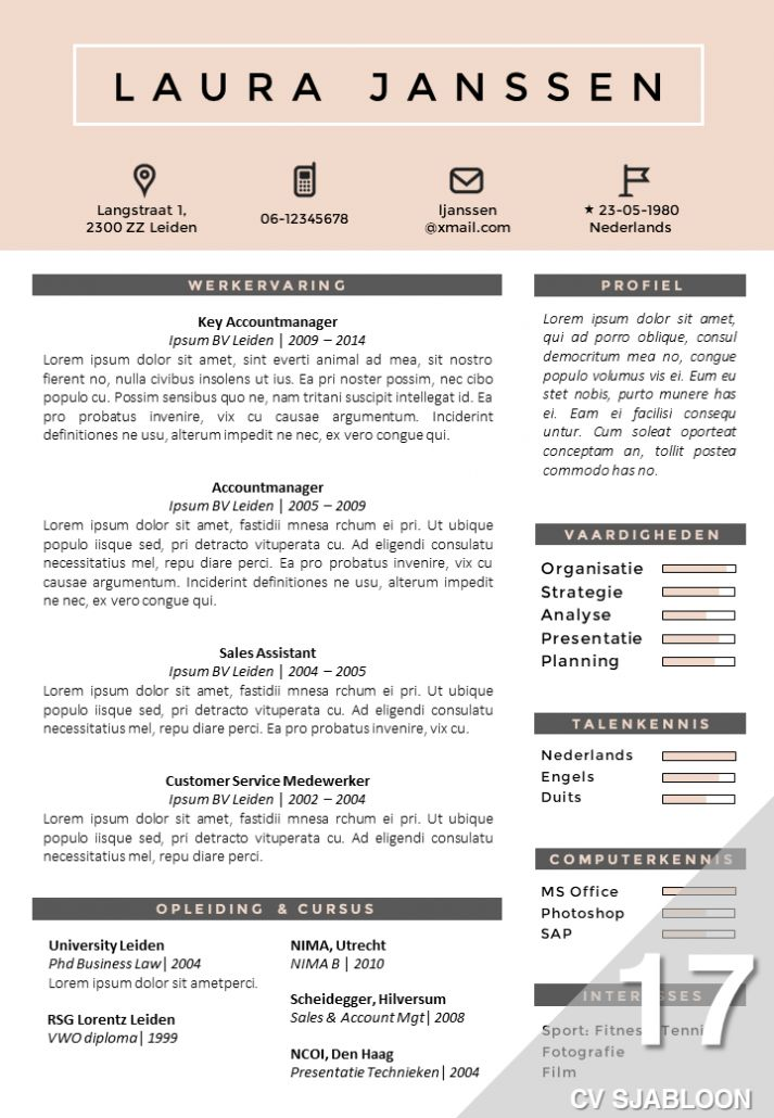 CV voorbeeld Word Cv sjabloon, Sjablonen, Creatief cv