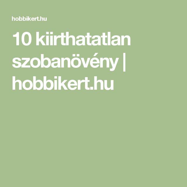 10 kiirthatatlan szobanövény | hobbikert.hu