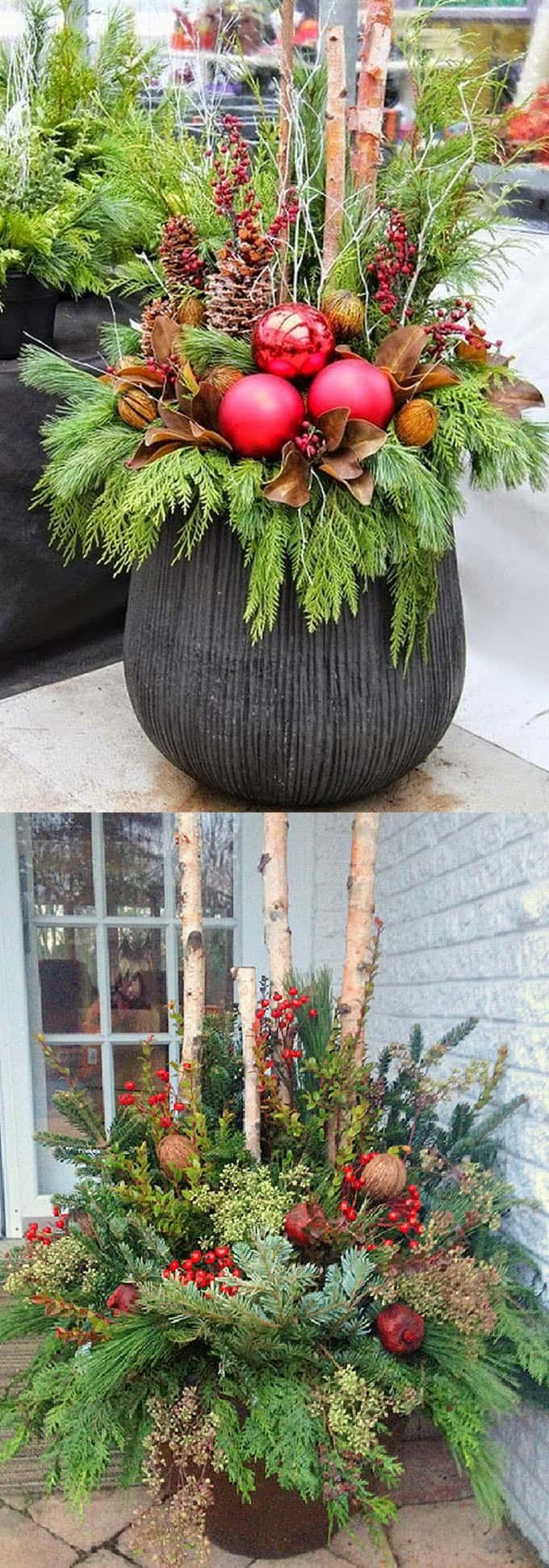 How to create colorful winter outdoor planters and beautiful Christmas planters …