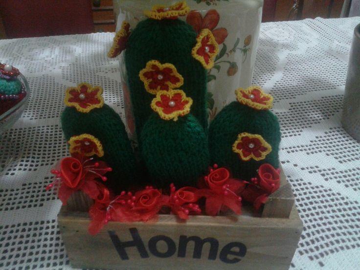 Cactus con la lana
