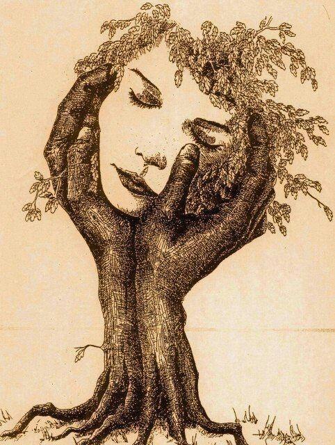""""""" Pour moi, la nature est sacrée. Les arbres sont…"""