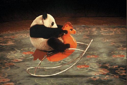 Panda on a rocking horse. Stuff you can only dream of...