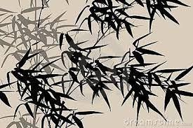 canne di bambu al vento - Cerca con Google