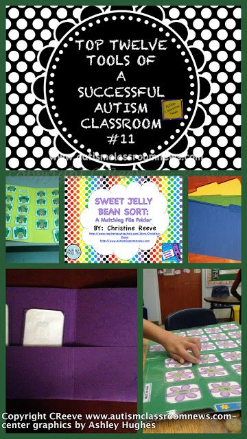 Prime Twelve Instruments of a Profitable Autism Classroom #11 {Freebie}