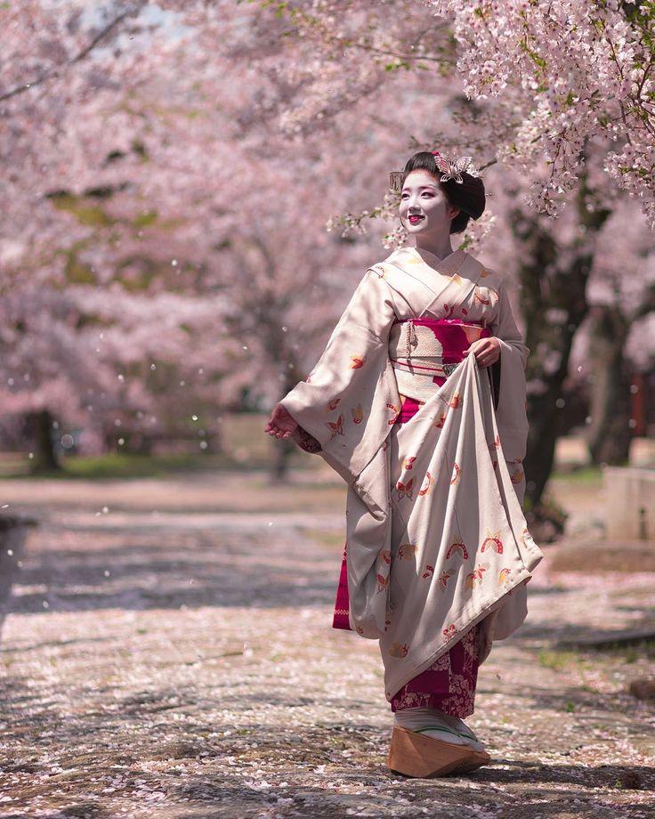 Maiko Katsuna of Kamishichiken under cherry trees in bloom. Source: Kinmokusei on Instagram