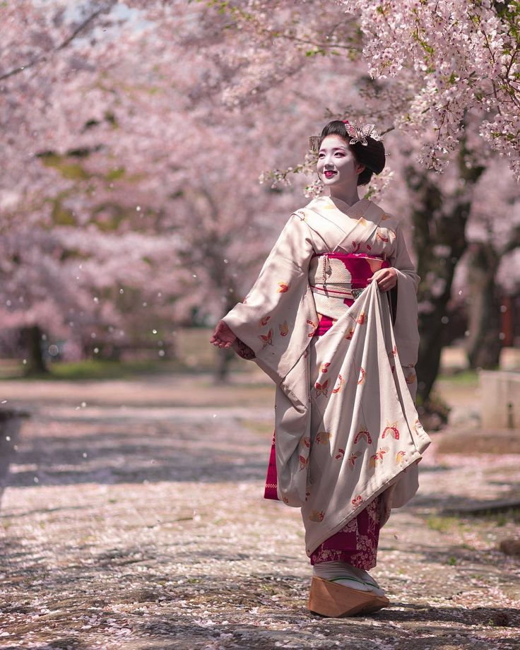 Maiko Katsuna of Kamishichiken under cherry trees in bloom. Source: Kinmokusei on Instagram