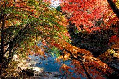 水上◆諏訪峡遊歩道