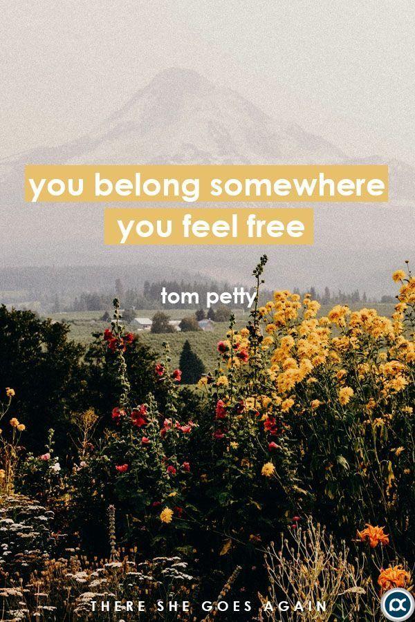 you belong somewhere you feel free tom petty wildflower