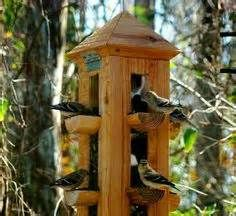 Wooden Bird Feeders Melbourne - The Best Image Search