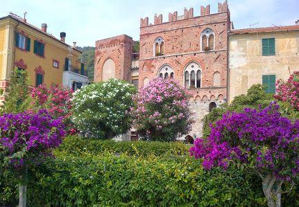 Reportage Naturalistici - Turismo - Cultura - - Raccolte - Google+