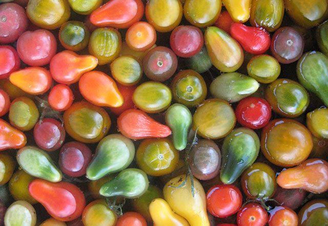 6 secrets to summer abundance in the edible garden