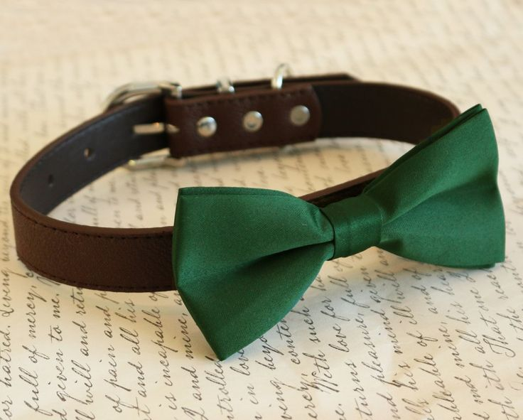 1000+ Images About Green Pet Wedding Accessory, Green