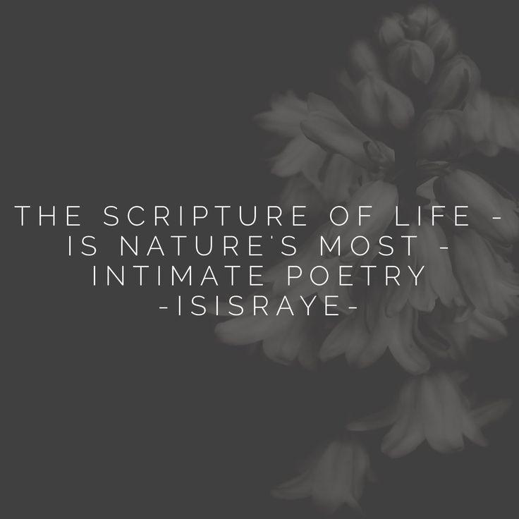 IsisRaye (@IsisRaye) | Twitter