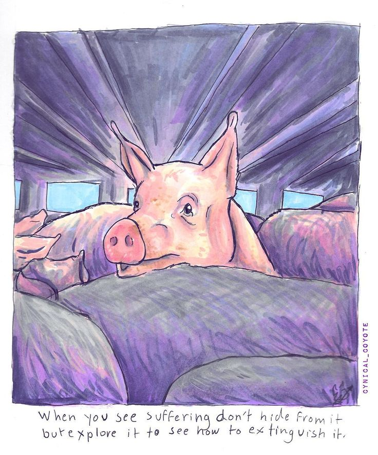 What have you done to extinguish suffering today? . . . . . . . . . Marker on smooth Bristol.  #meat #meatlovers #sausage #food #foodporn #hamburger #bacon #dinner #eggs #milk #jamieoliver #fuckvegans #ihatevegans #antivegan #feminism #egalitarian #equality #vegetarian #vegan  #meatismurder #stopYulin #icecream #art #traditionalart #veganart #copicmarker #copic #piggy